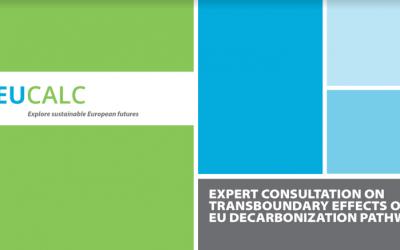 "Expert Consultation workshop on ""Transboundary Effects of EU decarbonization pathways"""