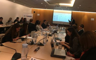 EUCalc presented at the Energy and Climate Working Group of Business Europe