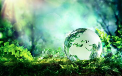 Horizon 2020 and Life-funded projects together for decarbonising EU economy and developing carbon-neutral pathways